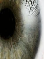 Imagem da iris de um olho, na cor cinza.