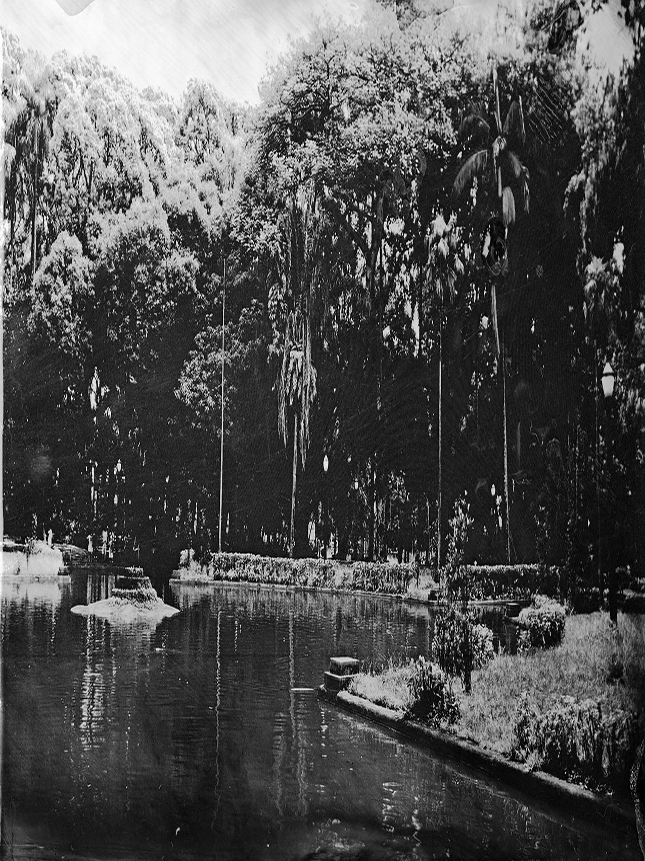 Fotografia em preto e branco do Jardim da Luz