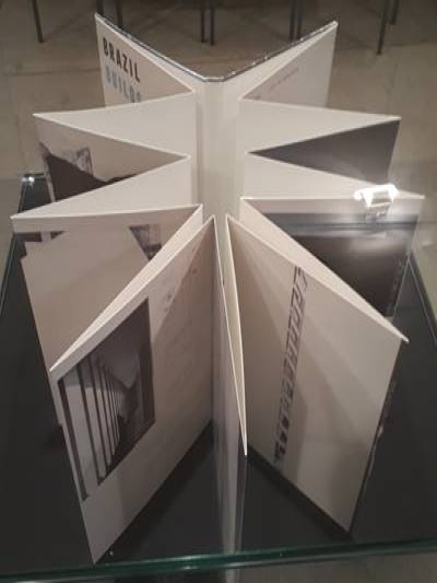Livro de Juan Araujo, intitulado Construção brasileira